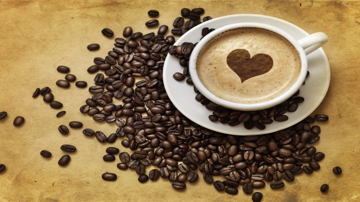 pelatiahan kopi